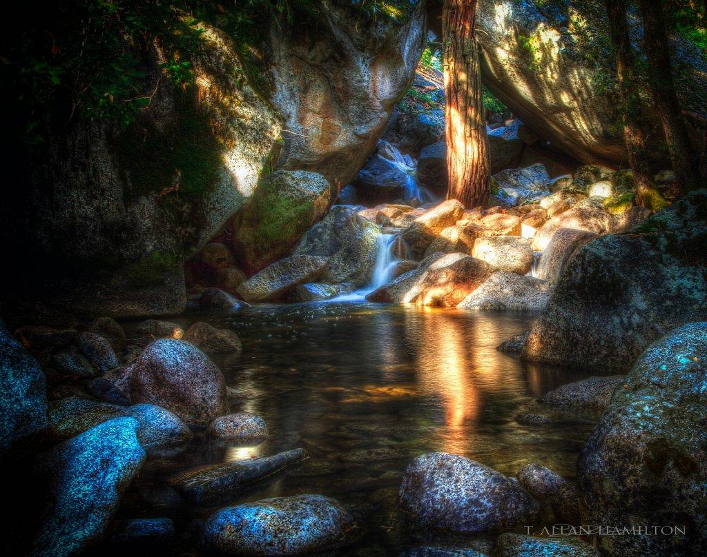 Near the cascades, Yosemite NP
