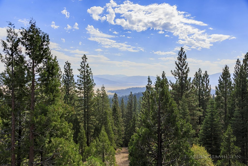 Sierra view mid-day.
