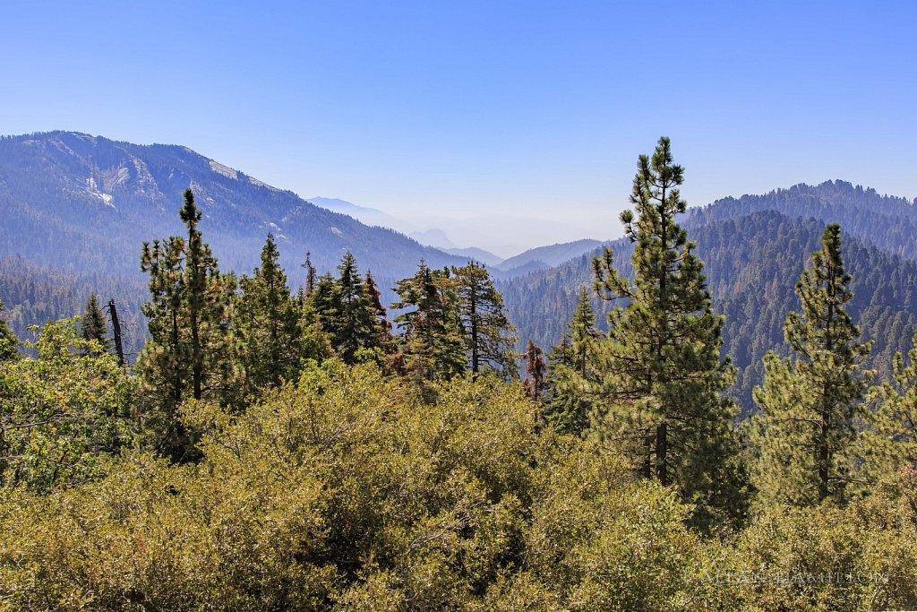 Cross Sierra view